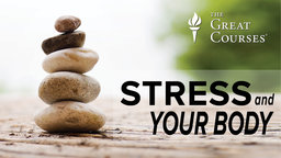 Stress and Your Body Series